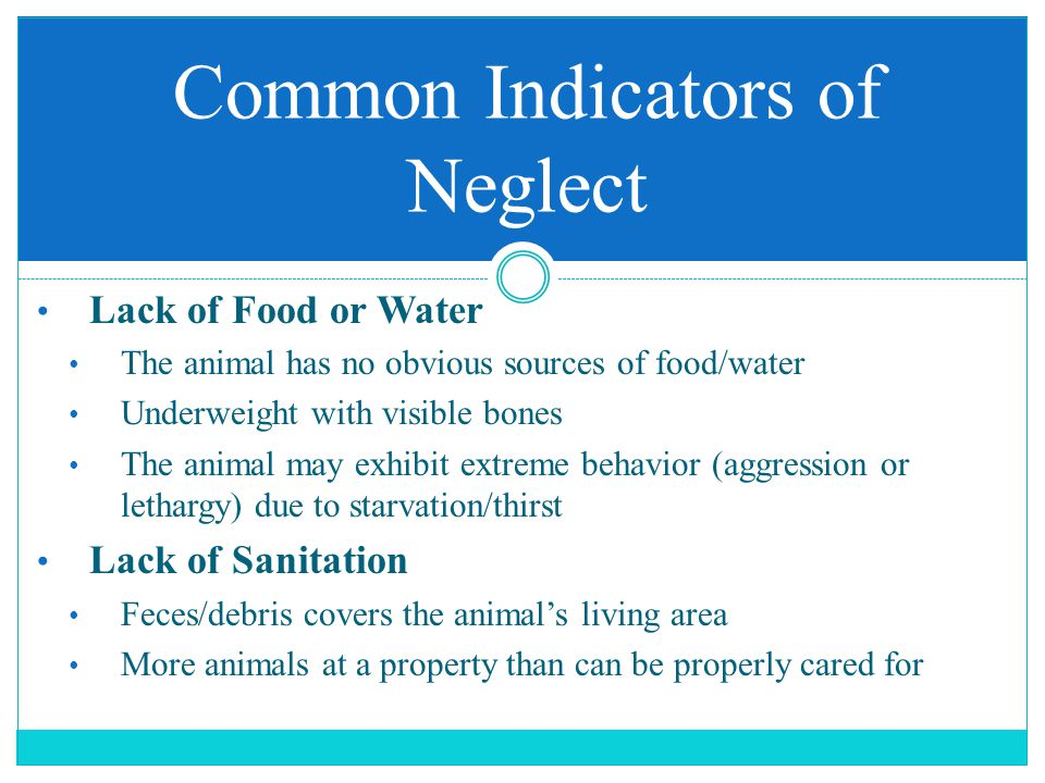 Lack of Food or Water The animal has no obvious sources of food/water Underweight with visible bones The animal may exhibit extreme behavior (aggressi