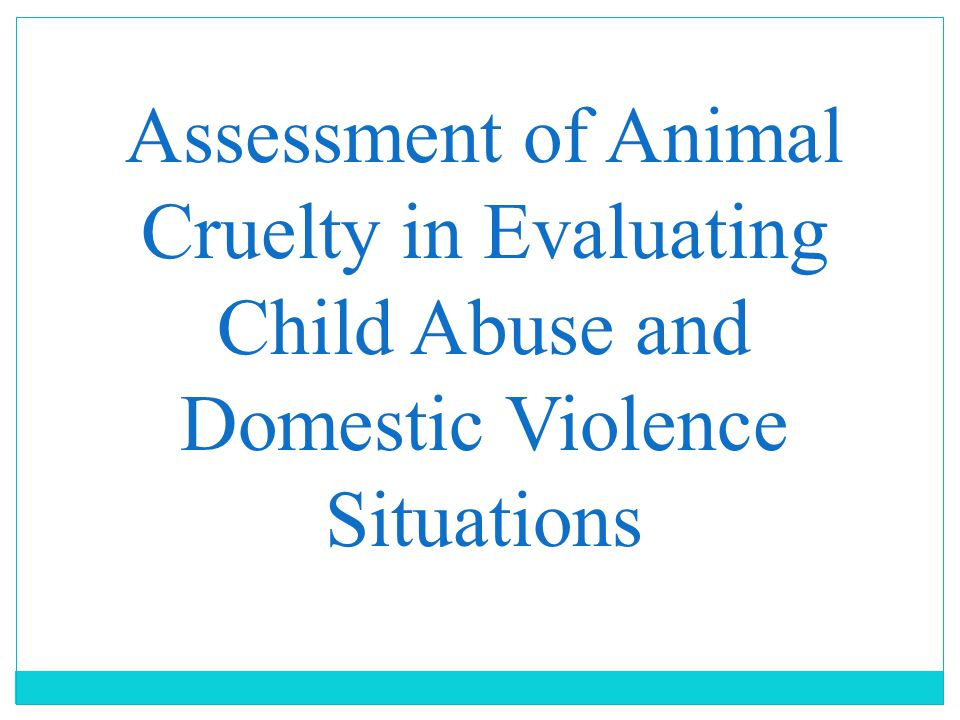 Assessment of Animal Cruelty in Evaluating Child Abuse and Domestic Violence Situations