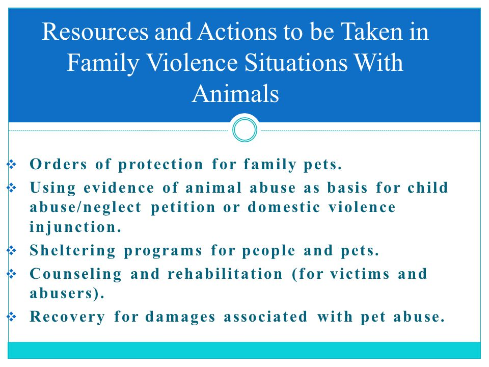  Orders of protection for family pets.