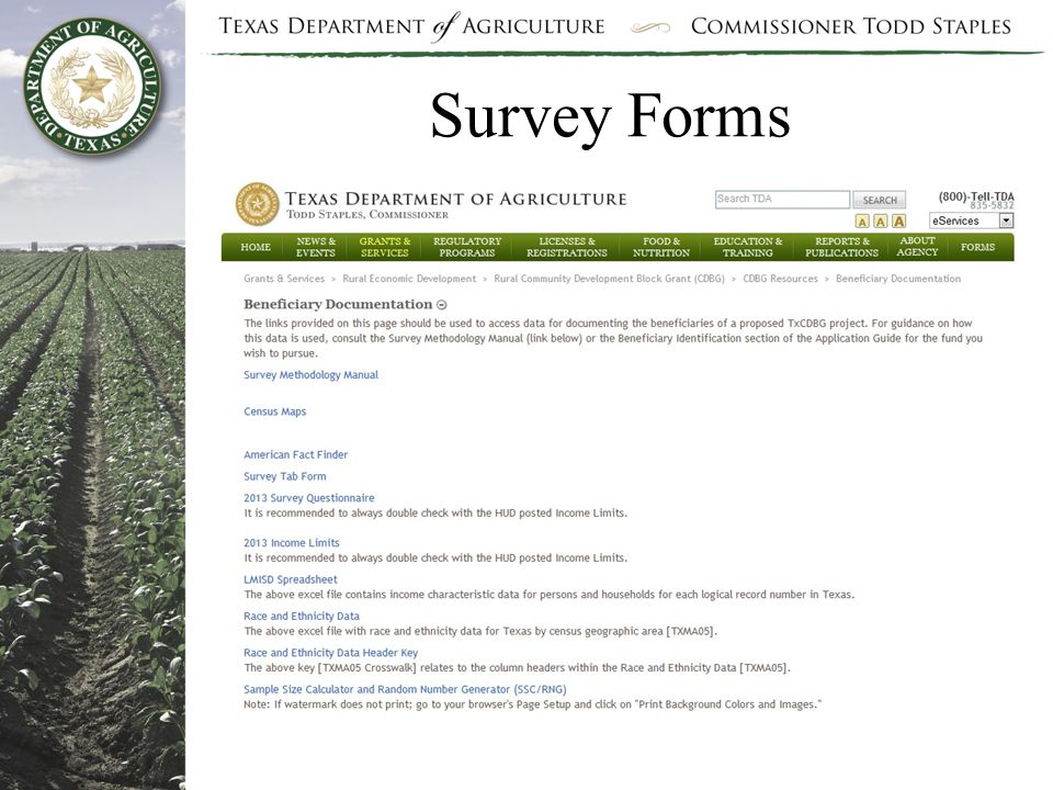Survey Forms