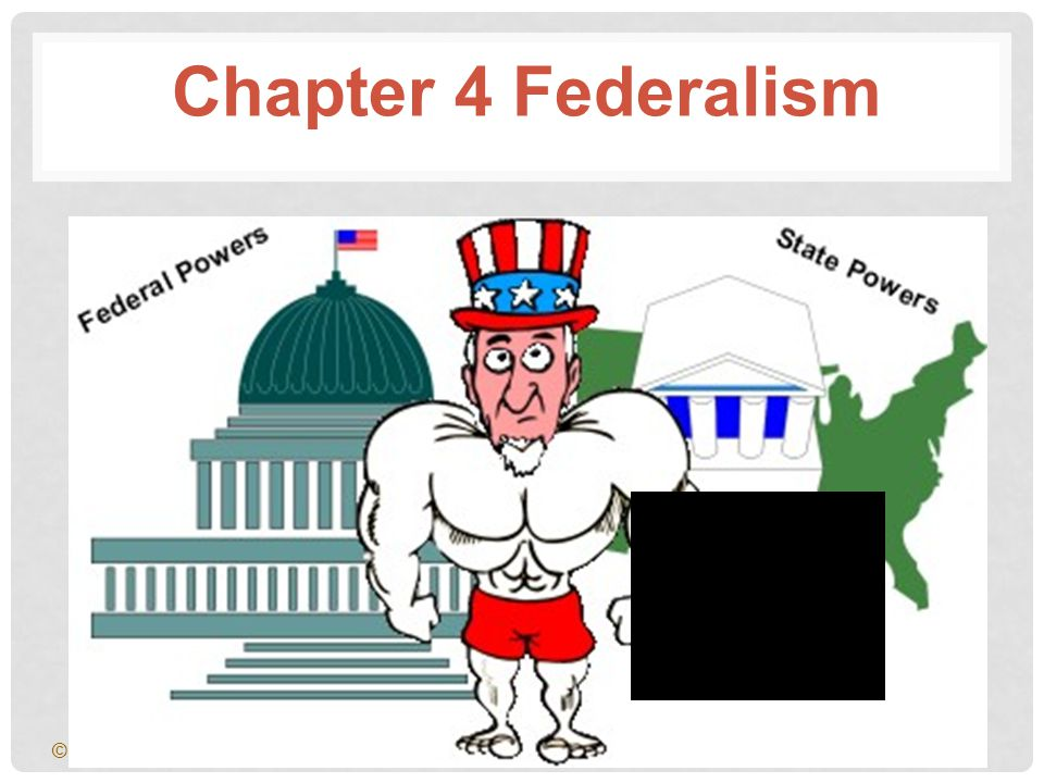 The Supreme Law of the Land The Supremacy Clause in the Constitution establishes the Constitution and United States laws as the supreme Law of the Land. Chapter 4, Section 1 23