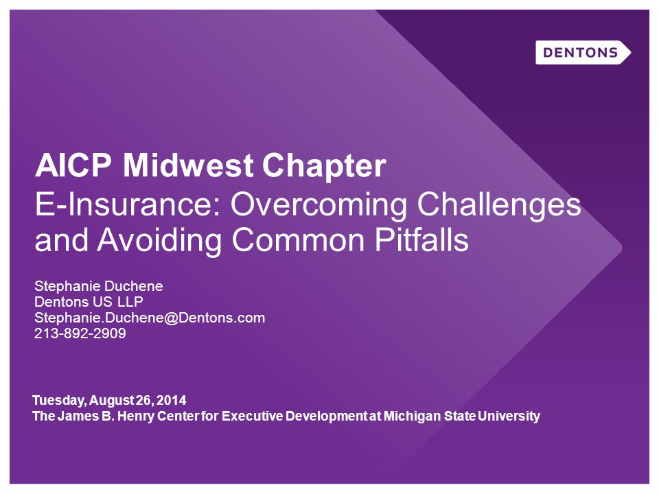 AICP Midwest Chapter E-Insurance: Overcoming Challenges and Avoiding Common Pitfalls Stephanie Duchene Dentons US LLP Stephanie.Duchene@Dentons.com 213-892-2909 Tuesday, August 26, 2014 The James B.