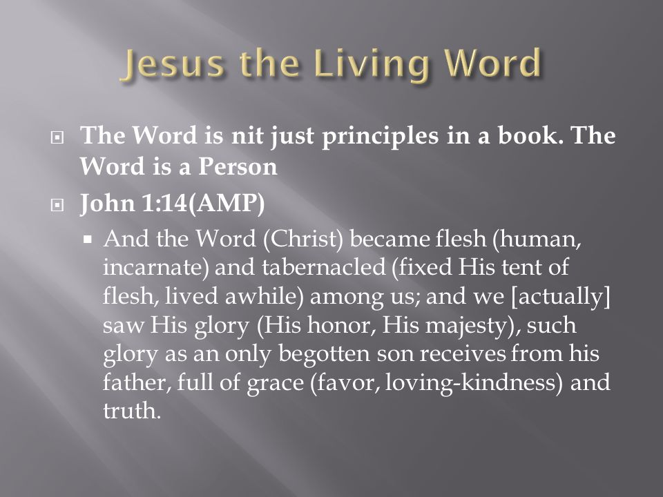  The Word is nit just principles in a book.