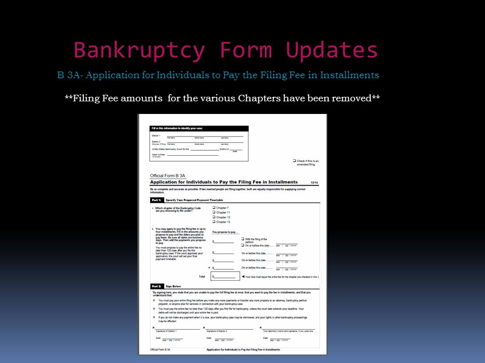 Bankruptcy Form Updates B 3A- Application for Individuals to Pay the Filing Fee in Installments **Filing Fee amounts for the various Chapters have been removed**