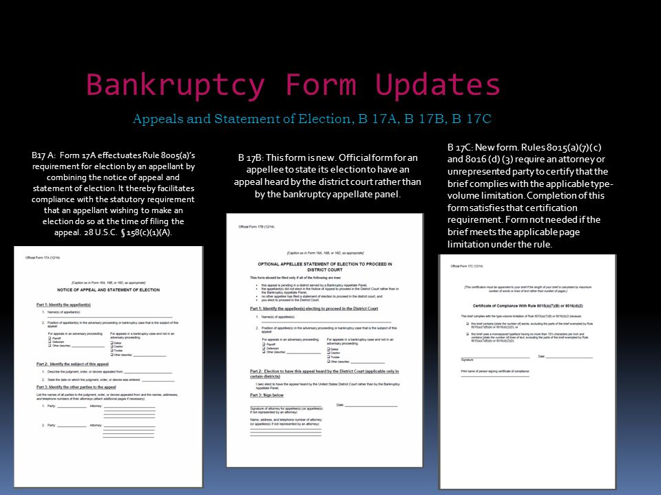 Bankruptcy Form Updates Appeals and Statement of Election, B 17A, B 17B, B 17C B 17B: This form is new. Official form for an appellee to state its ele