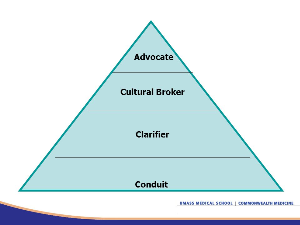 Advocate Cultural Broker Clarifier Conduit