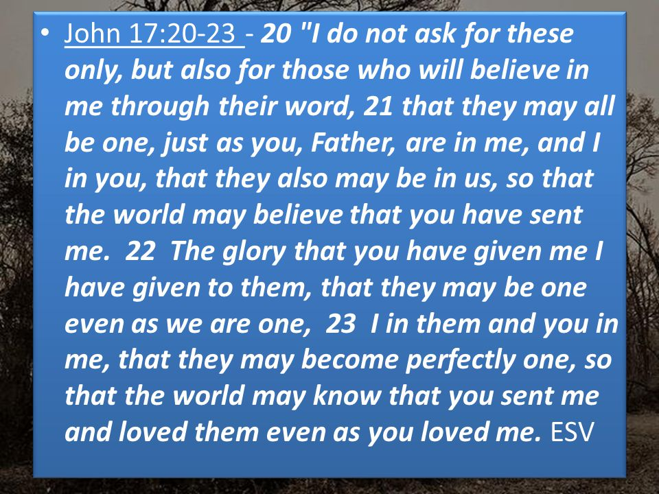 John 17:20-23 - 20 I do not ask for these only, but also for those who will believe in me through their word, 21 that they may all be one, just as you, Father, are in me, and I in you, that they also may be in us, so that the world may believe that you have sent me.