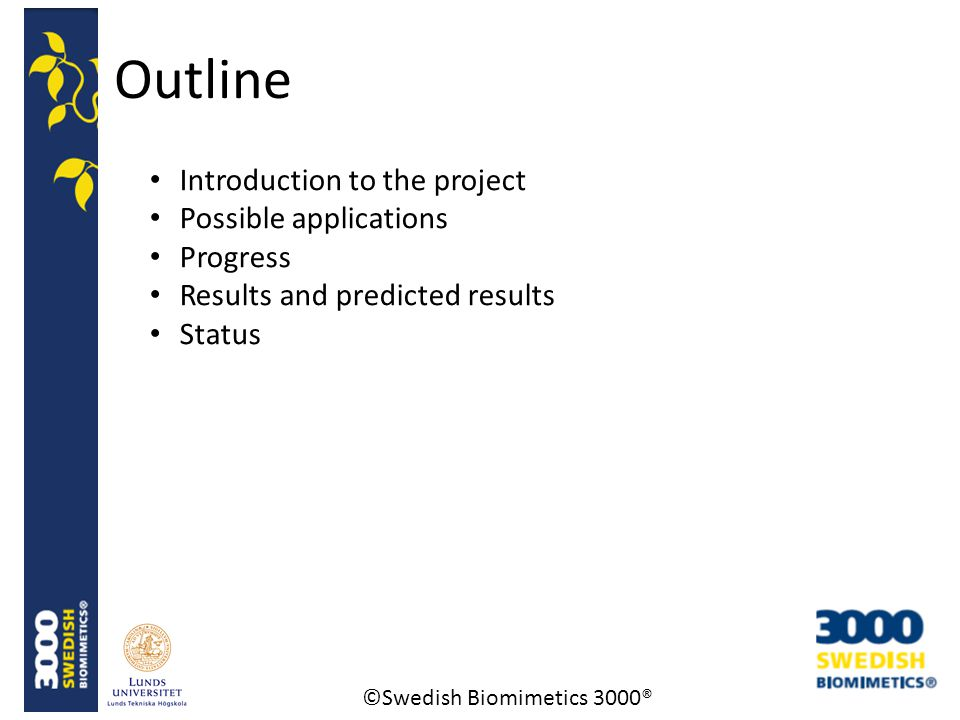 ©Swedish Biomimetics 3000® Outline Introduction to the project Possible applications Progress Results and predicted results Status