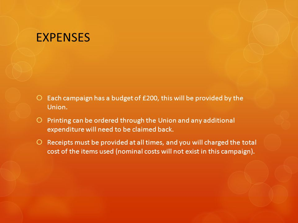 EXPENSES  Each campaign has a budget of £200, this will be provided by the Union.  Printing can be ordered through the Union and any additional expe