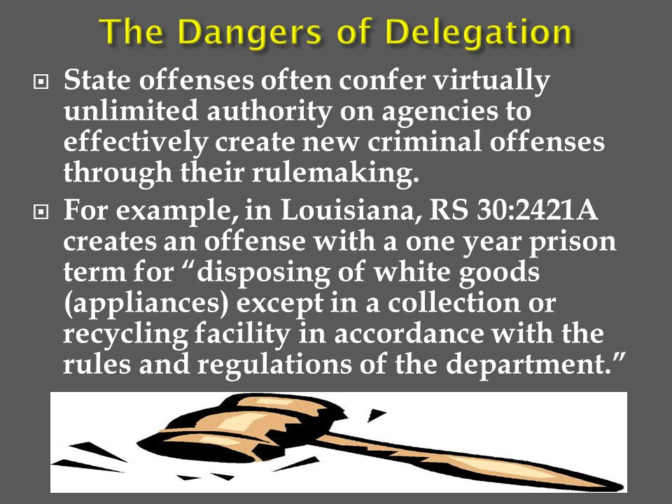  State offenses often confer virtually unlimited authority on agencies to effectively create new criminal offenses through their rulemaking.