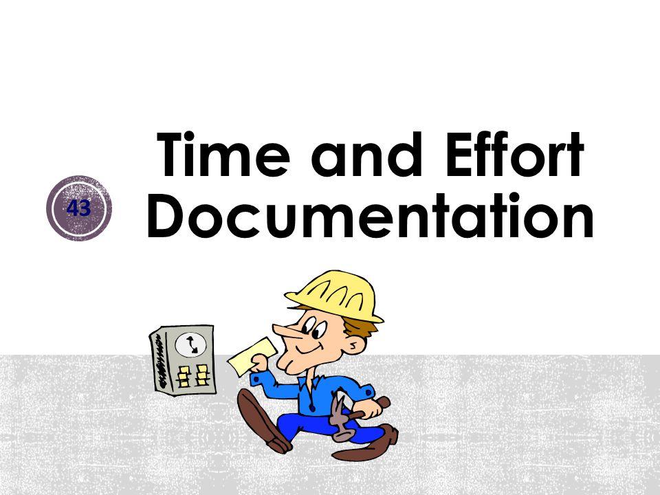 Time and Effort Documentation 43