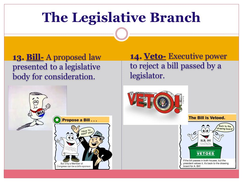13. Bill- A proposed law presented to a legislative body for consideration. 14. Veto- Executive power to reject a bill passed by a legislator. The Leg