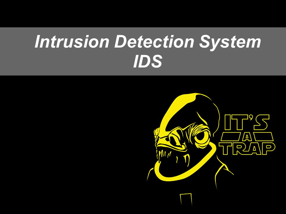 29 Intrusion Detection System IDS