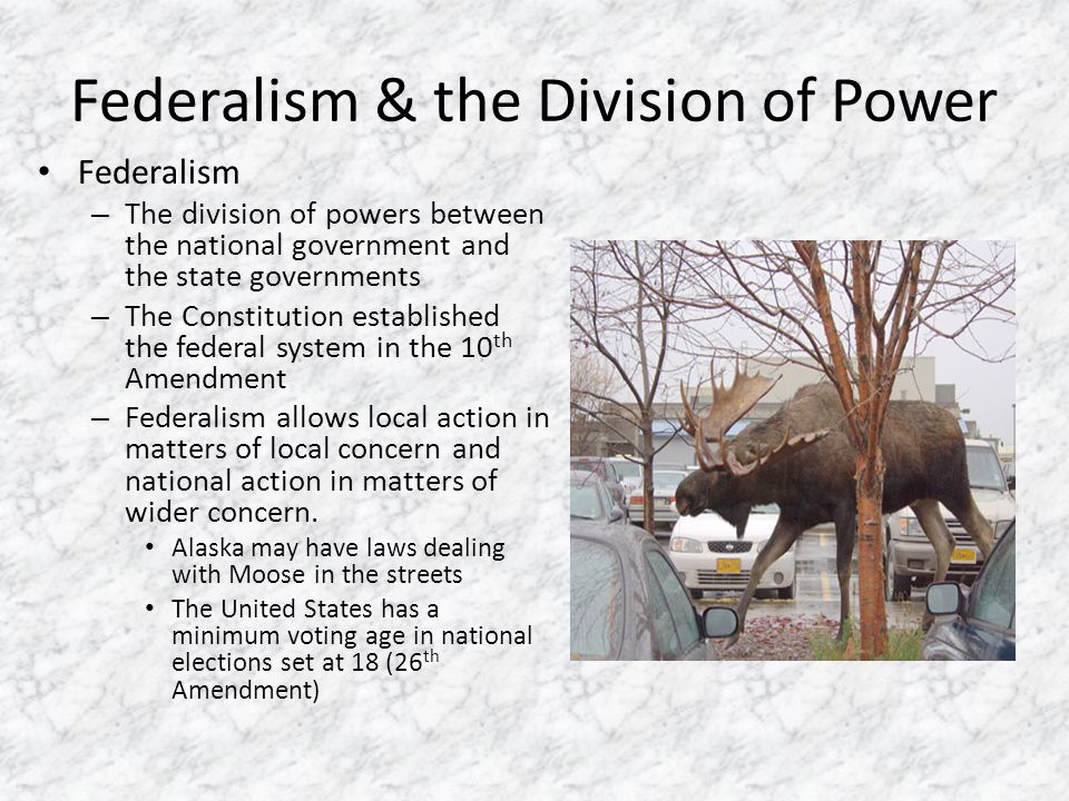 The National Government is one of Delegated Powers – The expressed powers are those powers that are clearly spelled out in the Constitution – The implied powers are the powers reasonably implied by the 'necessary and proper' power given to Congress.
