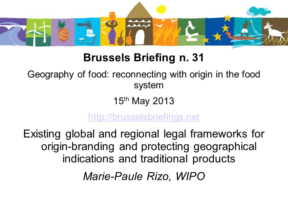 Brussels Briefing n.