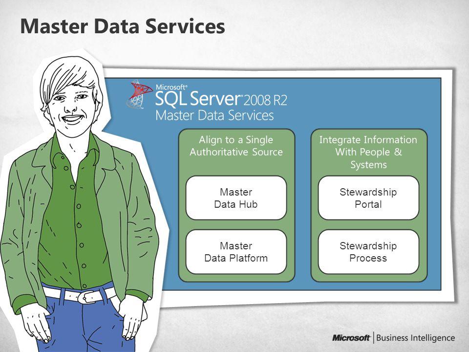 Master Data Services Master Data Platform Master Data Hub Stewardship Process Stewardship Portal