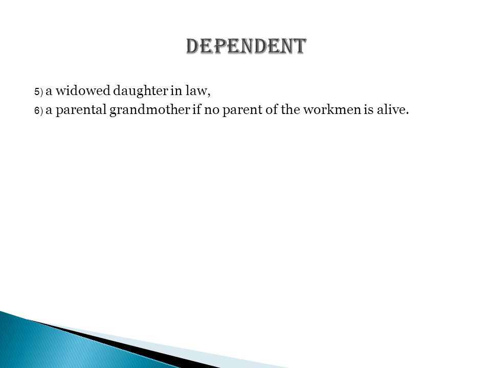 5) a widowed daughter in law, 6) a parental grandmother if no parent of the workmen is alive.
