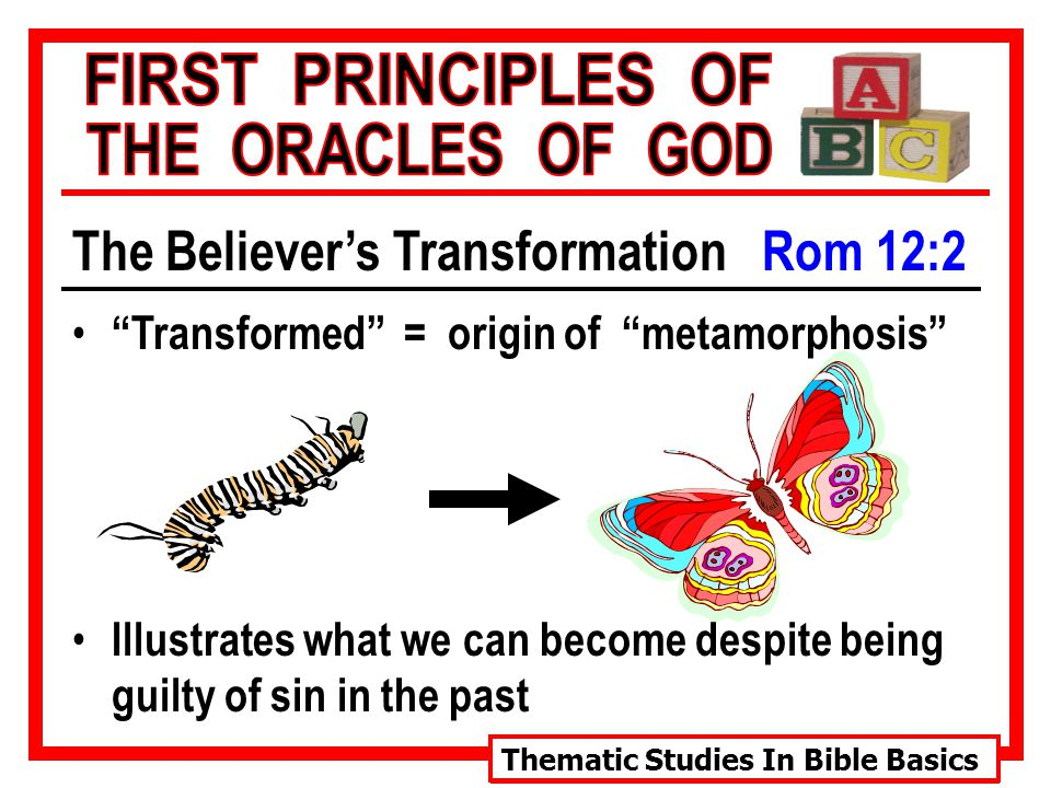 Thematic Studies In Bible Basics The Believer's Transformation Rom 12:2 Transformed = origin of metamorphosis Illustrates what we can become despite being guilty of sin in the past