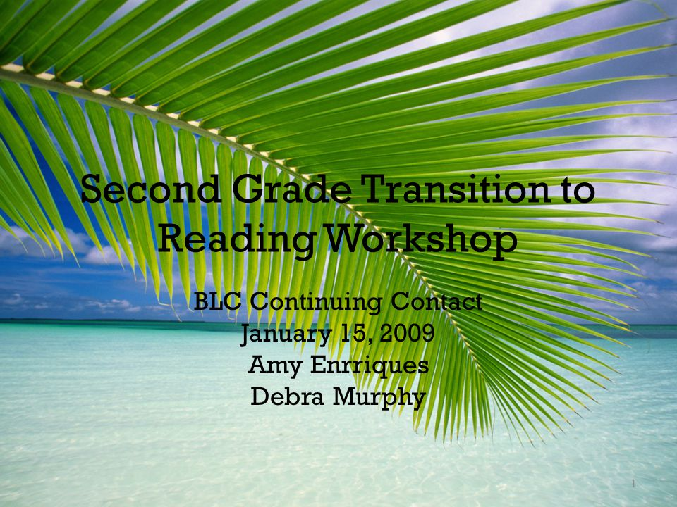 Second Grade Transition to Reading Workshop BLC Continuing Contact January 15, 2009 Amy Enrriques Debra Murphy 1