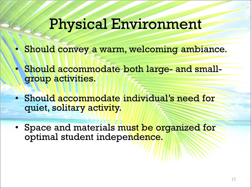 Physical Environment Should convey a warm, welcoming ambiance. Should accommodate both large- and small- group activities. Should accommodate individu