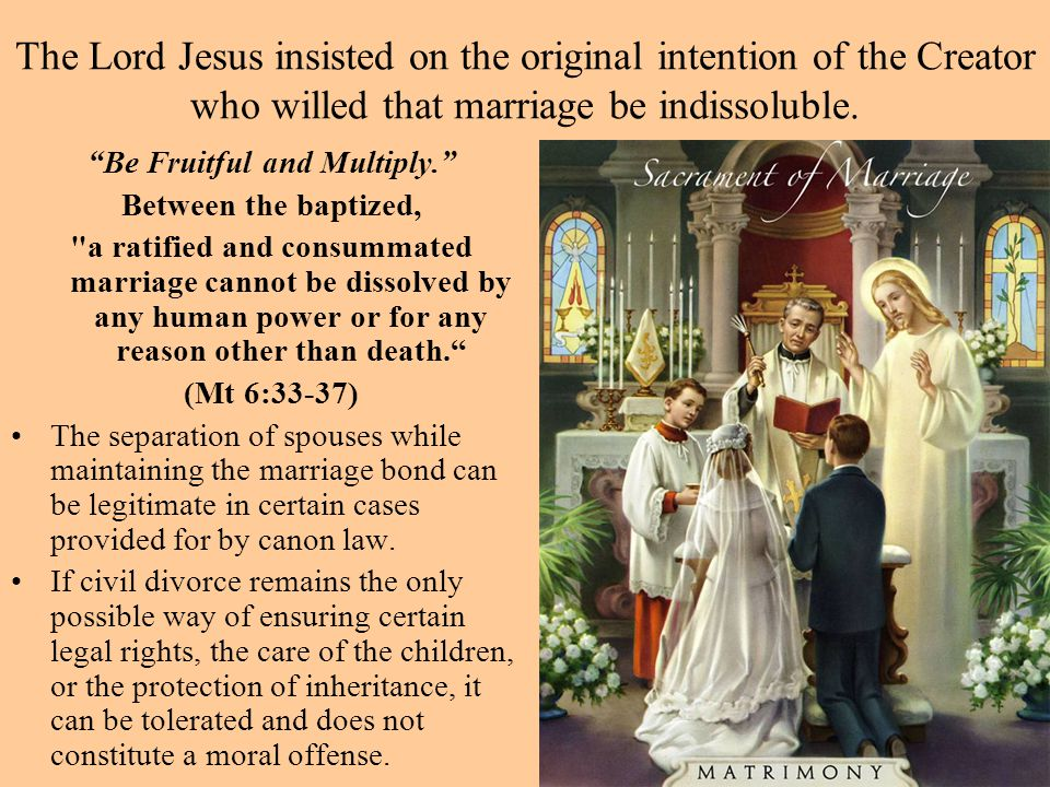 """The Lord Jesus insisted on the original intention of the Creator who willed that marriage be indissoluble. """"Be Fruitful and Multiply."""" Between the bap"""
