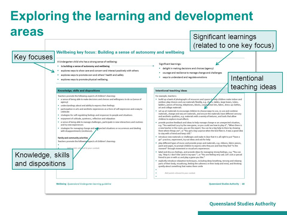 Exploring the learning and development areas Key focuses Significant learnings (related to one key focus) Knowledge, skills and dispositions Intention