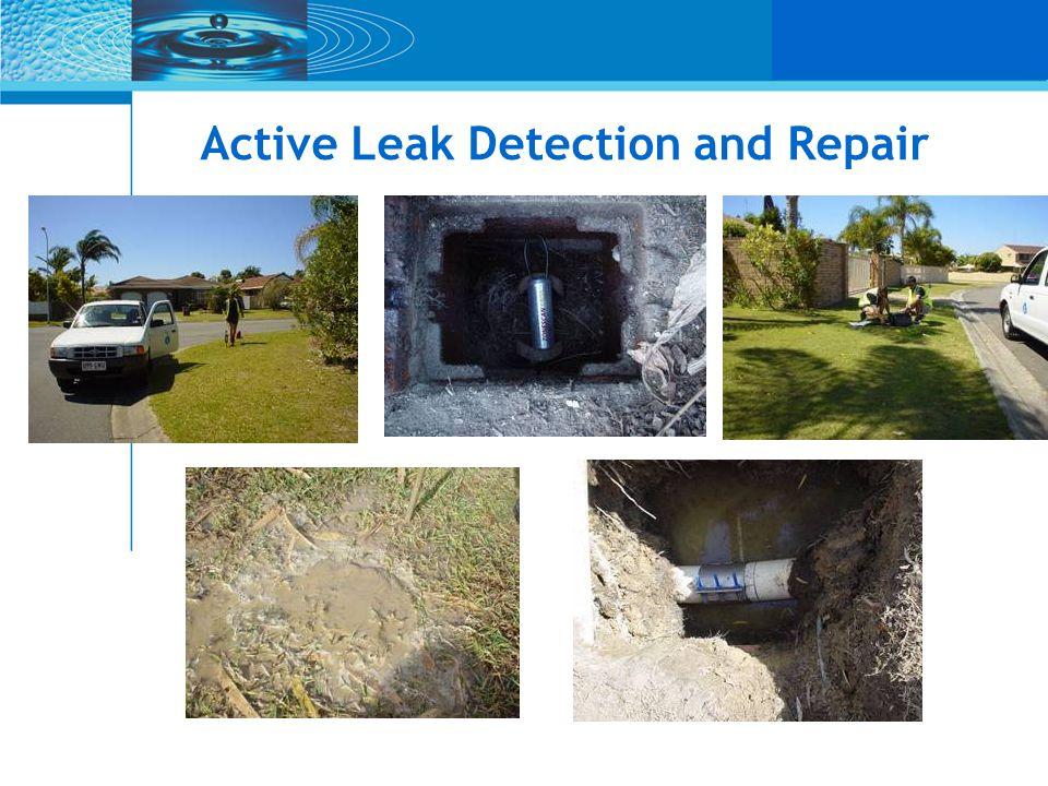 Active Leak Detection and Repair