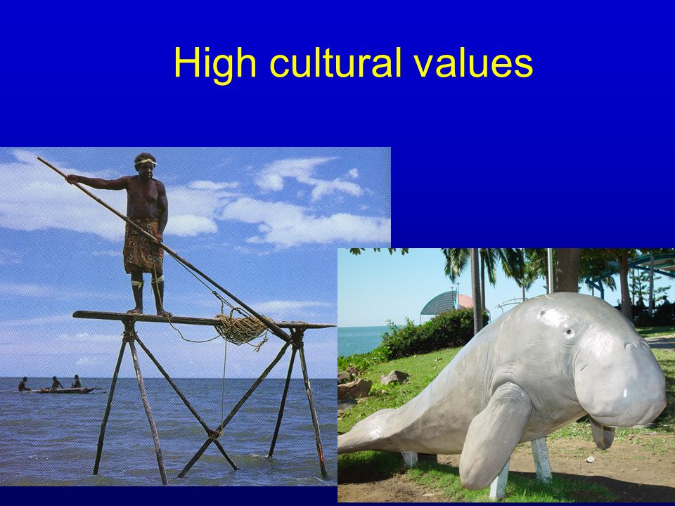High political value