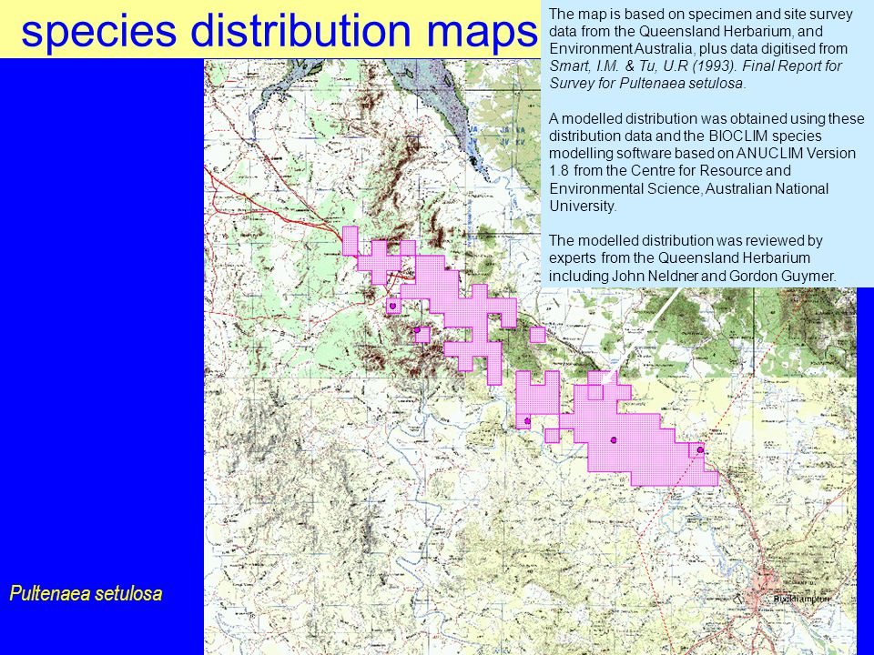 species distribution maps Pultenaea setulosa The map is based on specimen and site survey data from the Queensland Herbarium, and Environment Australia, plus data digitised from Smart, I.M.