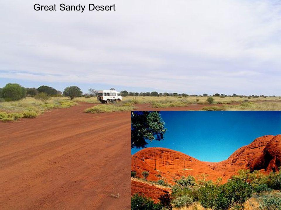Great Sandy Desert