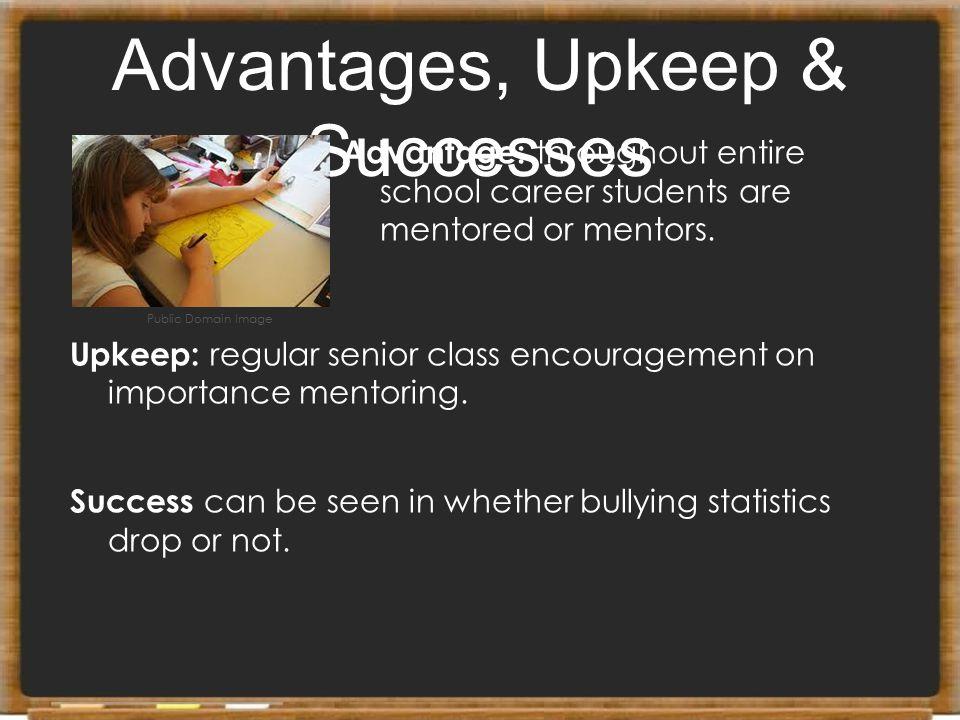 Advantages, Upkeep & Successes Advantage: throughout entire school career students are mentored or mentors. Upkeep: regular senior class encouragement