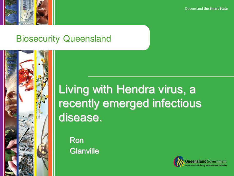 Biosecurity Queensland Living with Hendra virus, a recently emerged infectious disease.