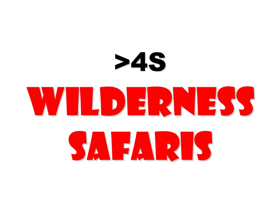 >4S Wilderness Safaris >4S Wilderness Safaris