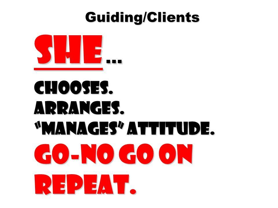 Guiding/Clients She … Chooses. Arranges. Manages attitude.