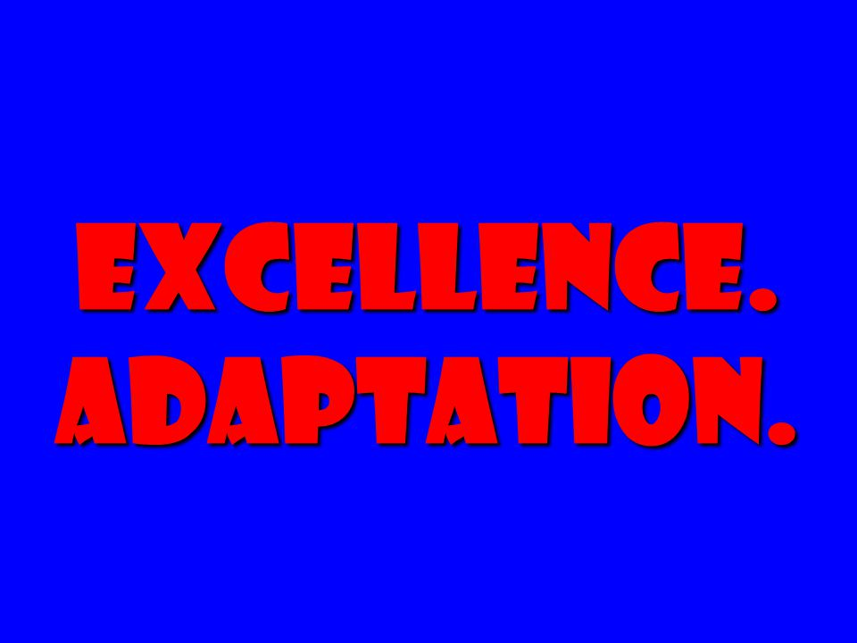 EXCELLENCE. Adaptation.