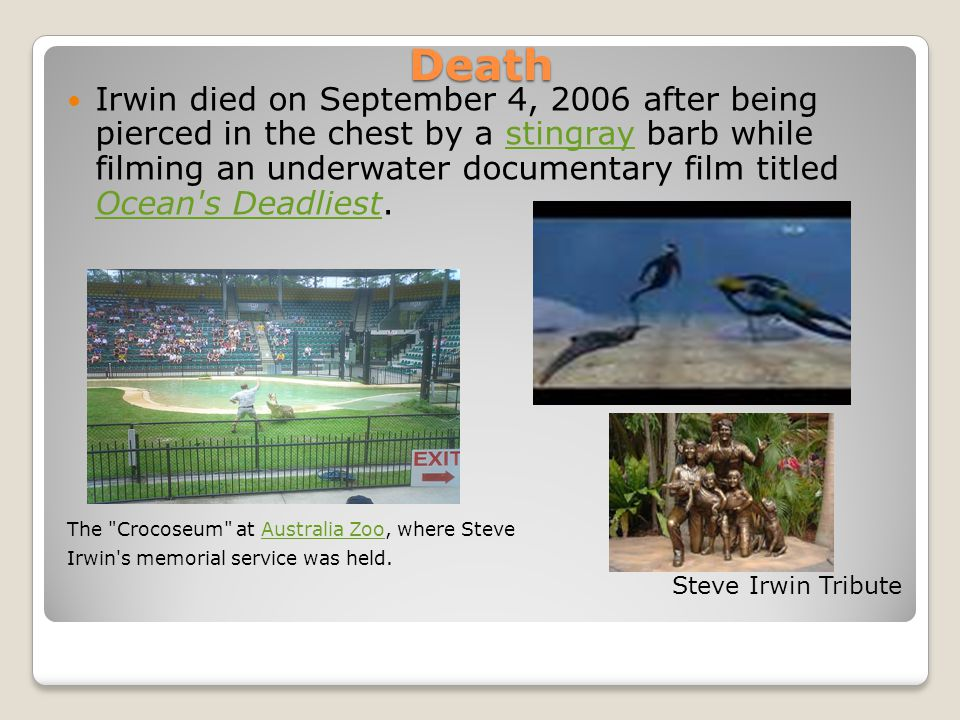 Death Irwin died on September 4, 2006 after being pierced in the chest by a stingray barb while filming an underwater documentary film titled Ocean's