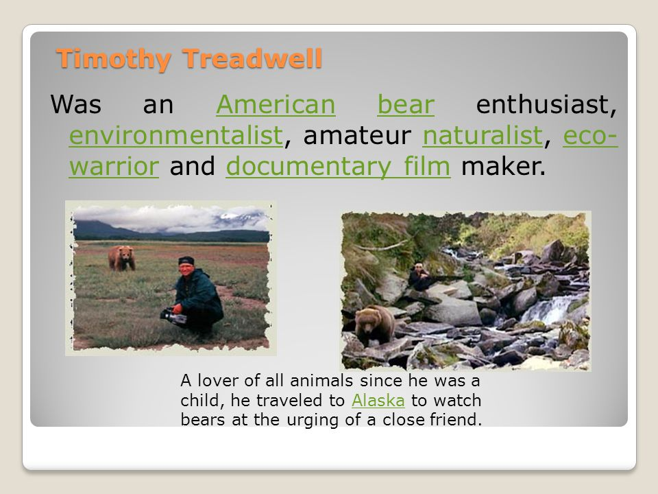Timothy Treadwell Was an American bear enthusiast, environmentalist, amateur naturalist, eco- warrior and documentary film maker.Americanbear environmentalistnaturalisteco- warriordocumentary film A lover of all animals since he was a child, he traveled to Alaska to watch bears at the urging of a close friend.Alaska
