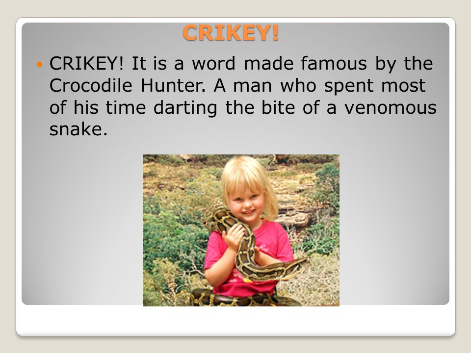 CRIKEY! CRIKEY! It is a word made famous by the Crocodile Hunter. A man who spent most of his time darting the bite of a venomous snake.