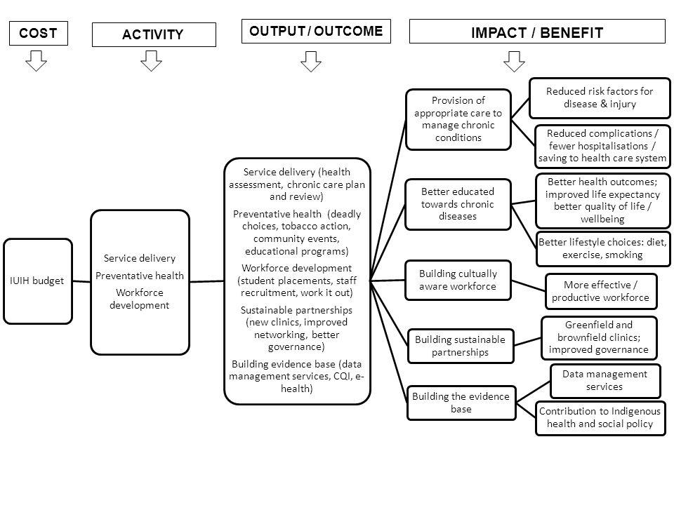 IUIH budget Service delivery Preventative health Workforce development Service delivery (health assessment, chronic care plan and review) Preventative