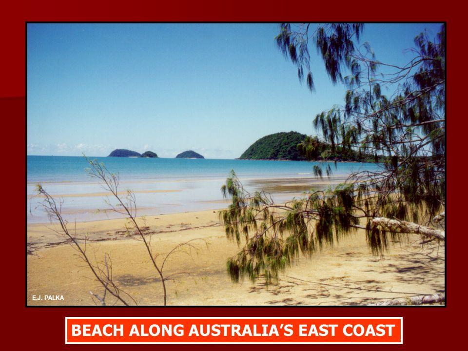 BEACH ALONG AUSTRALIA'S EAST COAST E.J. PALKA