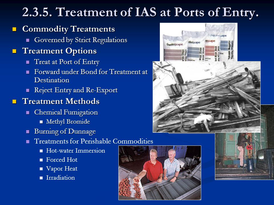 2.3.5. Treatment of IAS at Ports of Entry.