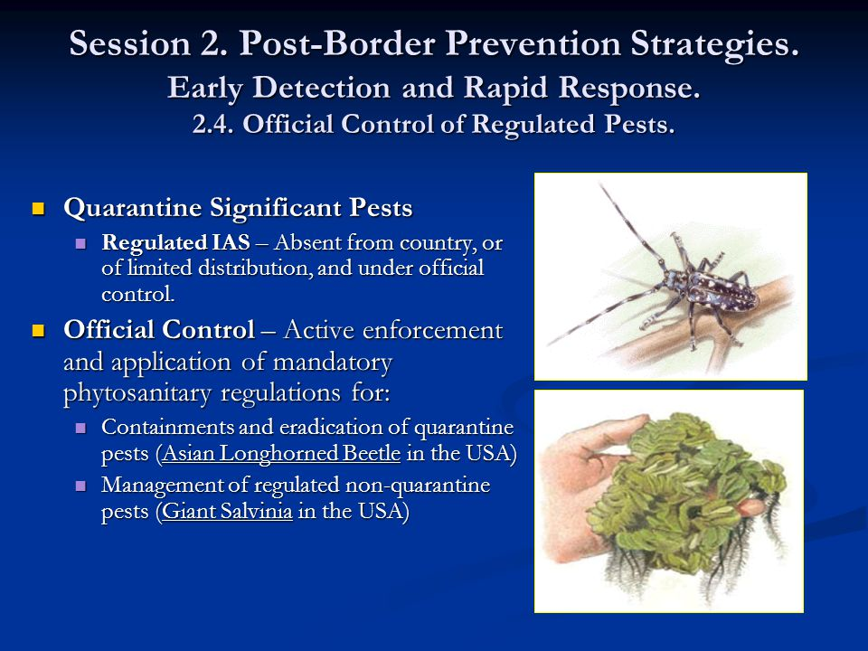 Session 2. Post-Border Prevention Strategies. Early Detection and Rapid Response.
