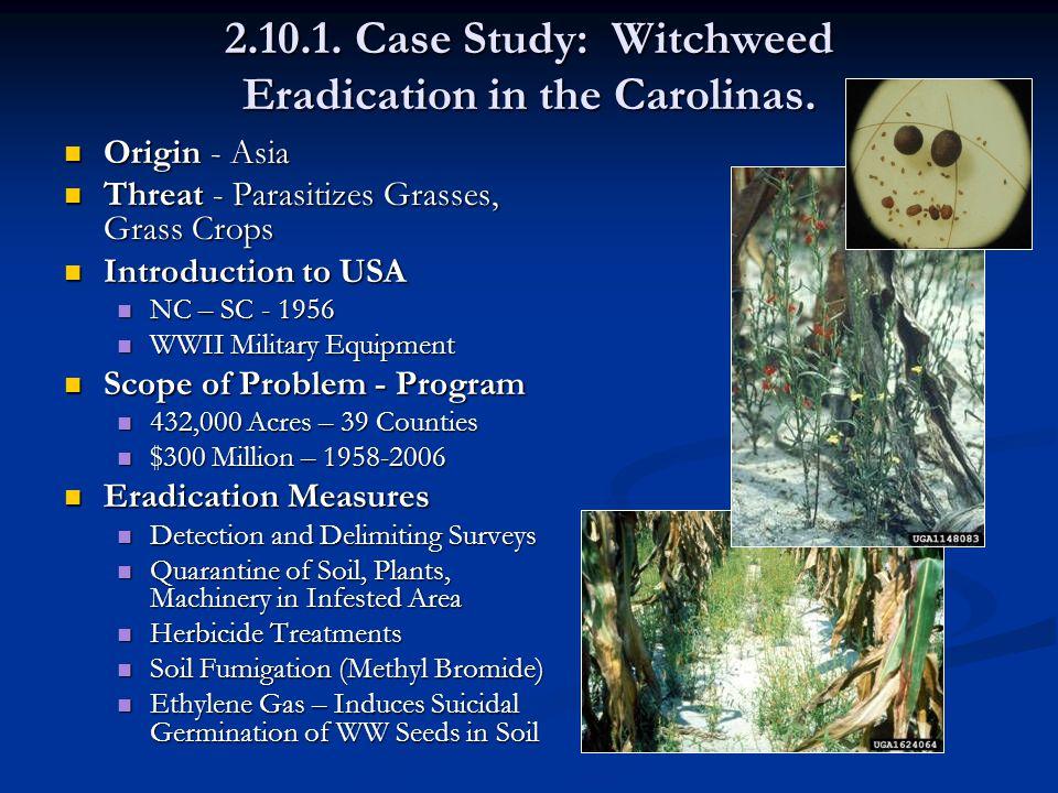 2.10.1. Case Study: Witchweed Eradication in the Carolinas.