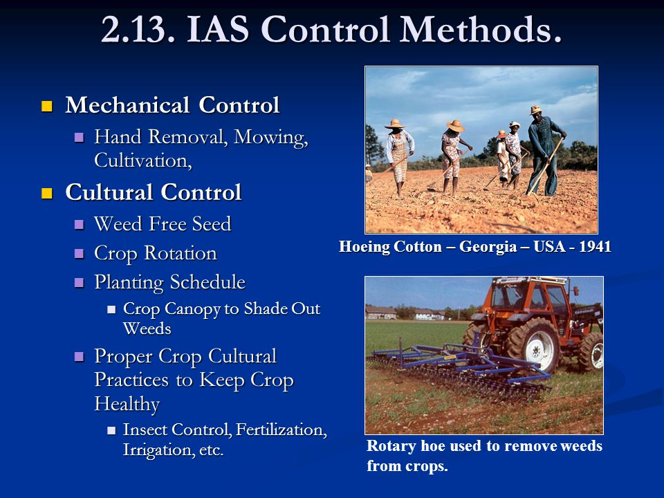 2.13. IAS Control Methods.