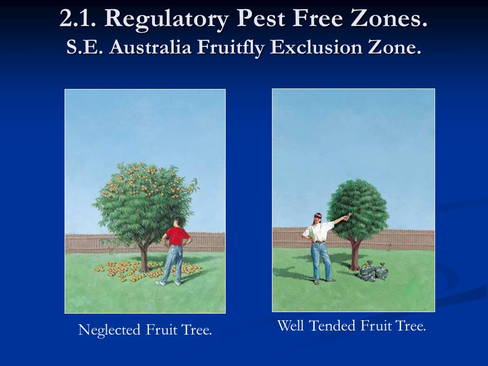 2.1. Regulatory Pest Free Zones. S.E. Australia Fruitfly Exclusion Zone.