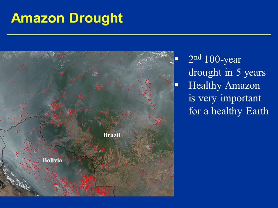   2 nd 100-year drought in 5 years   Healthy Amazon is very important for a healthy Earth Amazon Drought