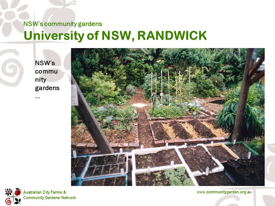 Australian City Farms & Community Gardens Network www.communitygarden.org.au s NSW's commu nity gardens … NSW's community gardens University of NSW, RANDWICK