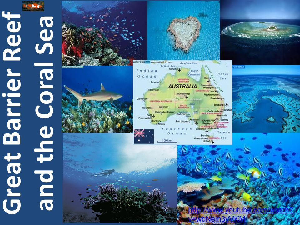 Coral Sea Great Barrier Reef Ayers Rock Great Victorian Desert Physical Regions of Australia