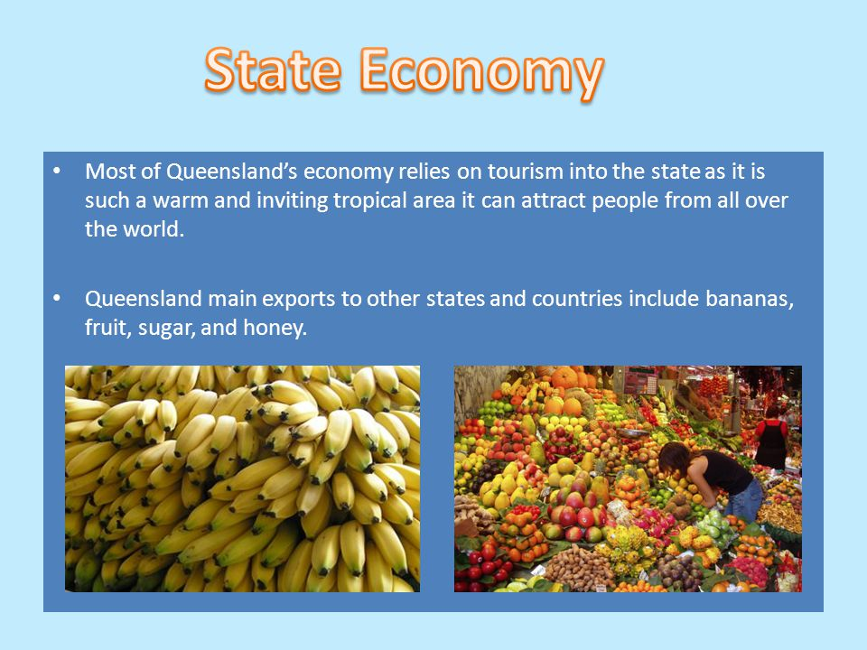 Most of Queensland's economy relies on tourism into the state as it is such a warm and inviting tropical area it can attract people from all over the world.