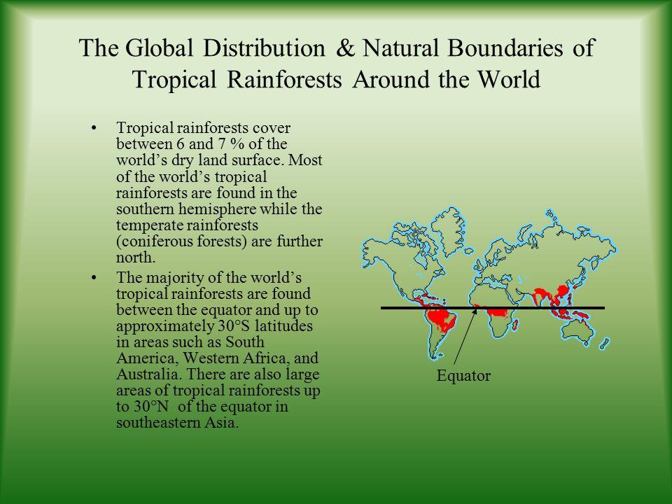 Tropical Rainforests Natural Boundaries, Global Distribution & Latitudes & Longitudes